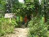 k-p1020081.jpg